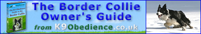 The Border Collie Owner's Guide eBook
