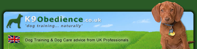 Dog Training and Dog Care advice from UK Professionals