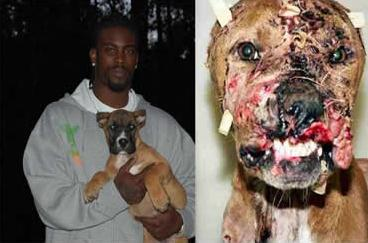 Dog Fighting Lowlife - Michael Vick