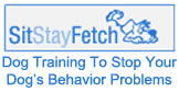 Highly Recommended Dog Training Course