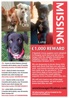 Urgent Missing Dogs Appeal