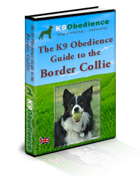 The K9Obedience Guide to the Border Collie